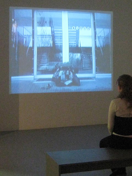<center><em>I Dream of the Stans</em>, 2008